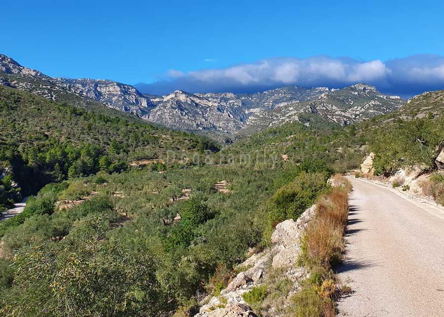 Camí dels Ports a prop Mas de Barberans