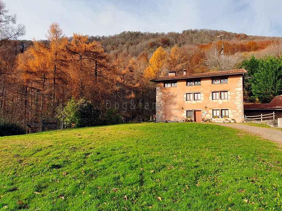 Kaaño Etxea, una casa rural ecológica y sostenible en los bosques de Navarra