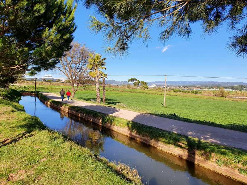 Caminant pel camí de la Sèquia: del parc de l'Agulla als aiguamolls de la Bòbila