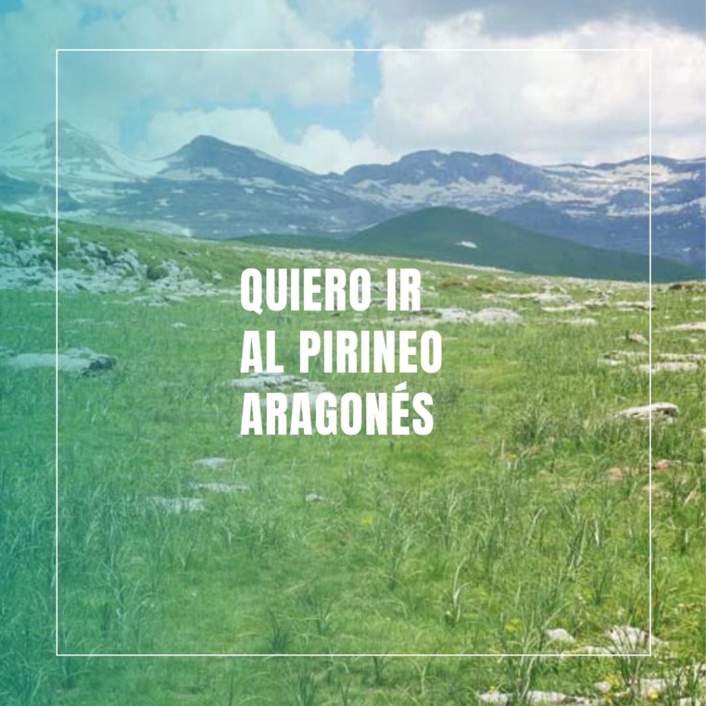 Alojamientos dogfriendly Dog & Family Pirineo Aragonés