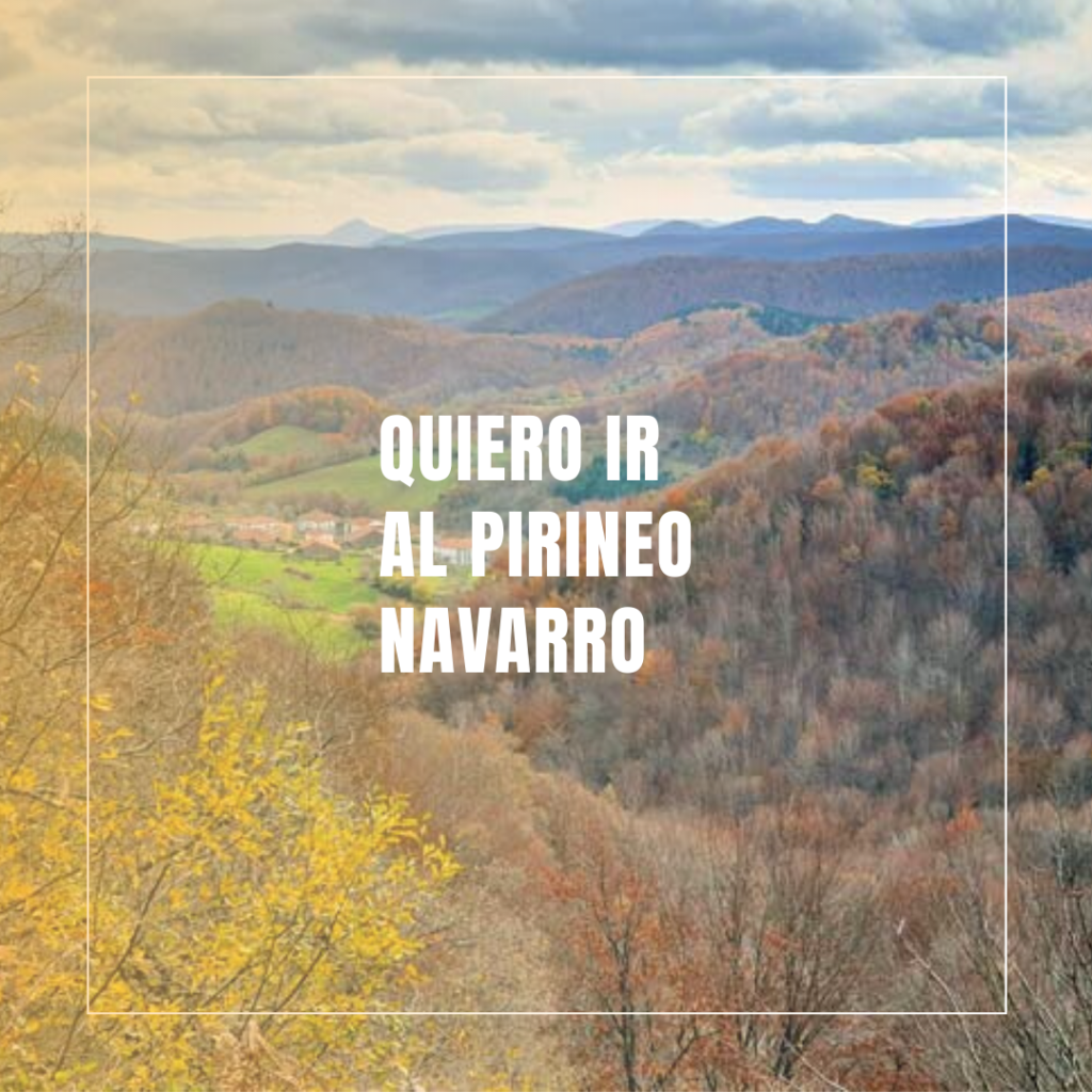 alojamientos dogfriendly Dog & Family Pirineo Navarro